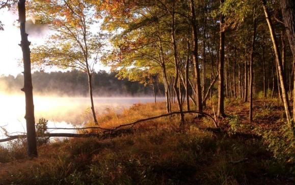 Canoe Lake Lot223